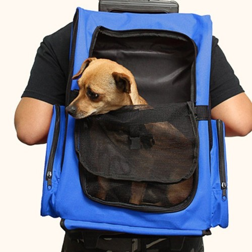 Dogs & Cats&Small Animals Tote Travel Backpack Pet Rolling Carrier Backpack