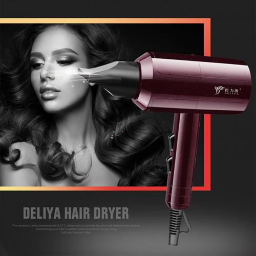 DELIYA Hair Dryer:Constant temperature Hair dryer, Lightweight 2000 Watt Quick Dry Professional Salon Blow Dryer